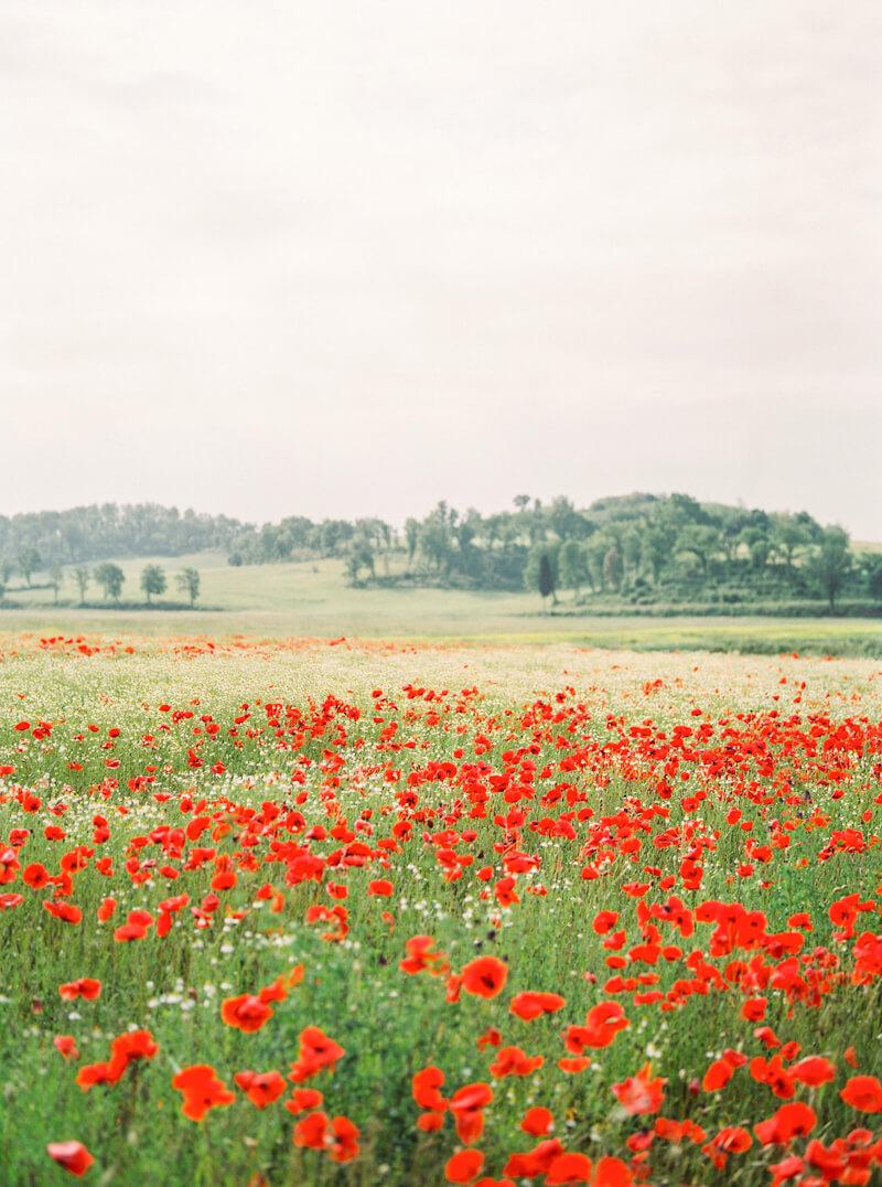 tuscany-italy-engagement-photos-18.jpg