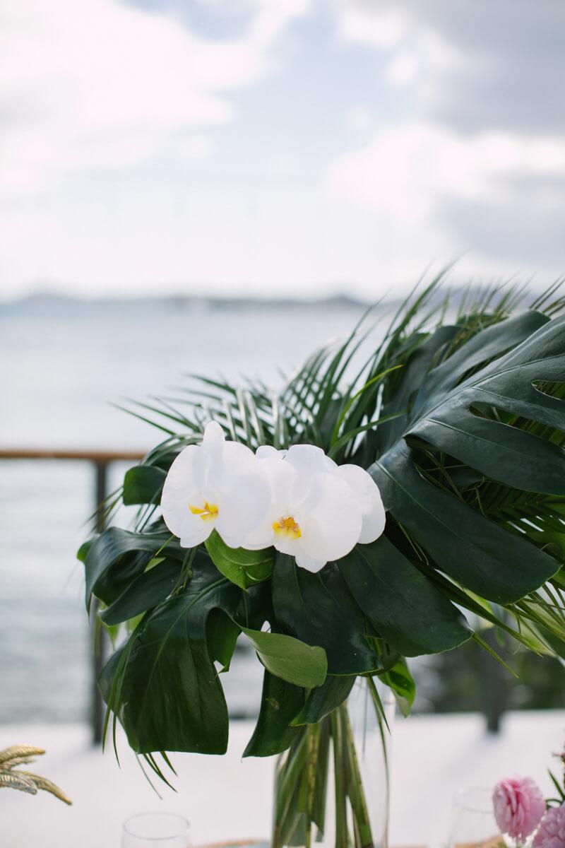 virgin-islands-wedding-photos-6.jpg