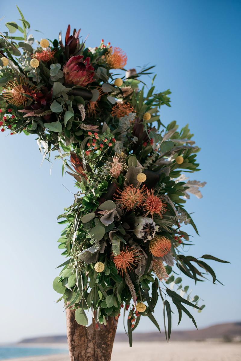 todos-santos-mexico-wedding-14.jpg