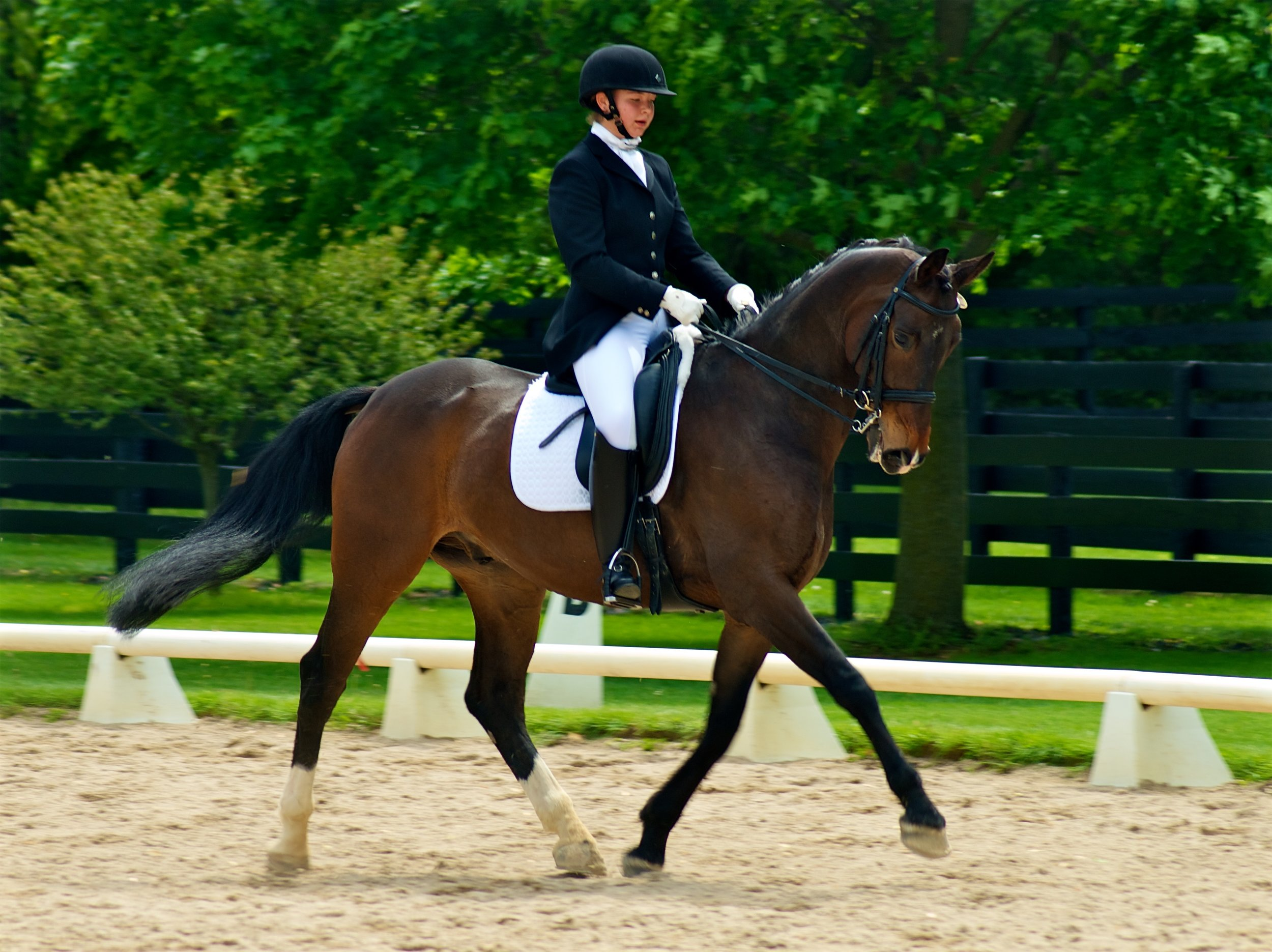 Allison Gerlt on Winspo