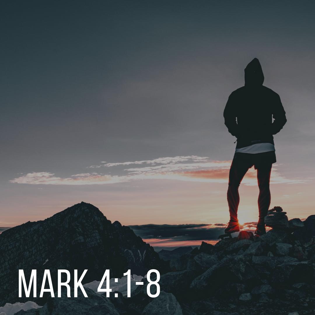 Mark 4_1-8.jpg