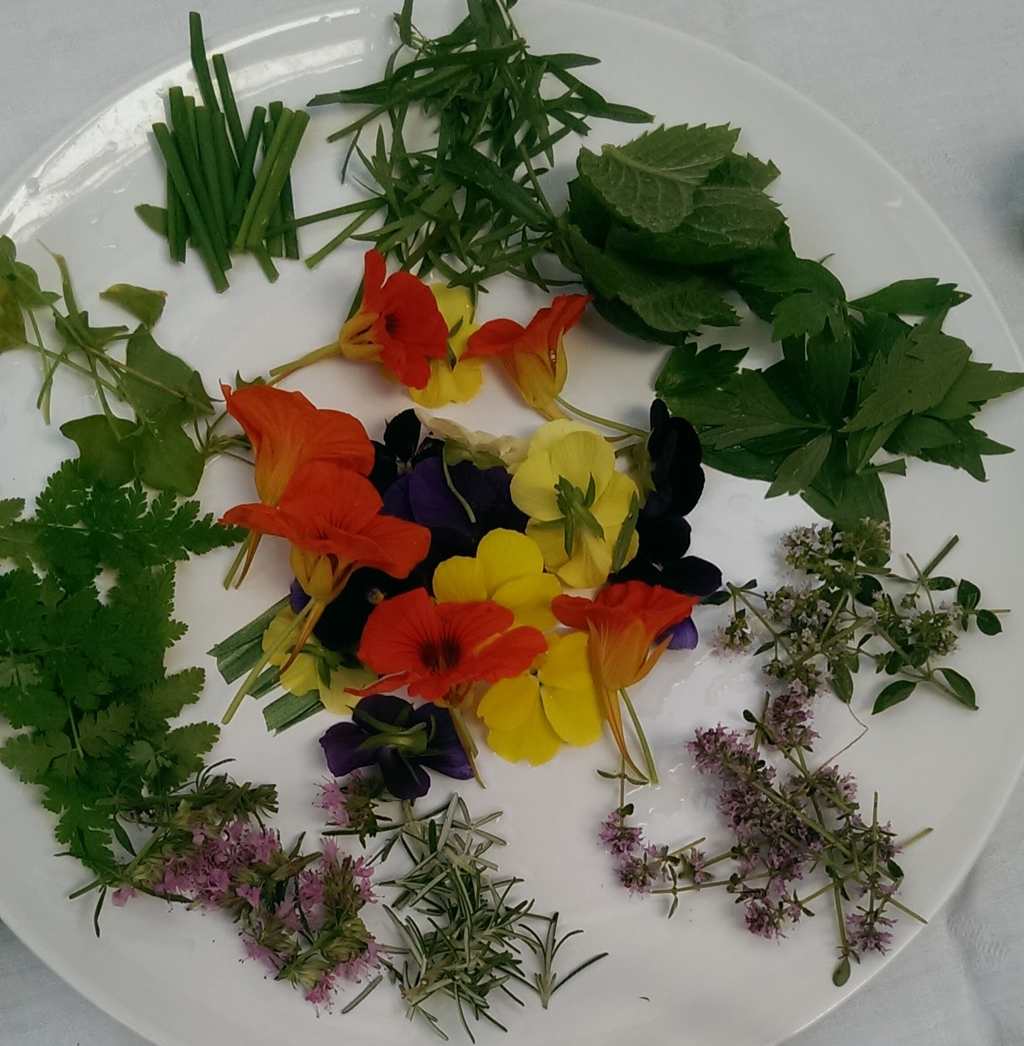 You can grow edible flowers and herbs to add colour and zing to your favourite dishes.