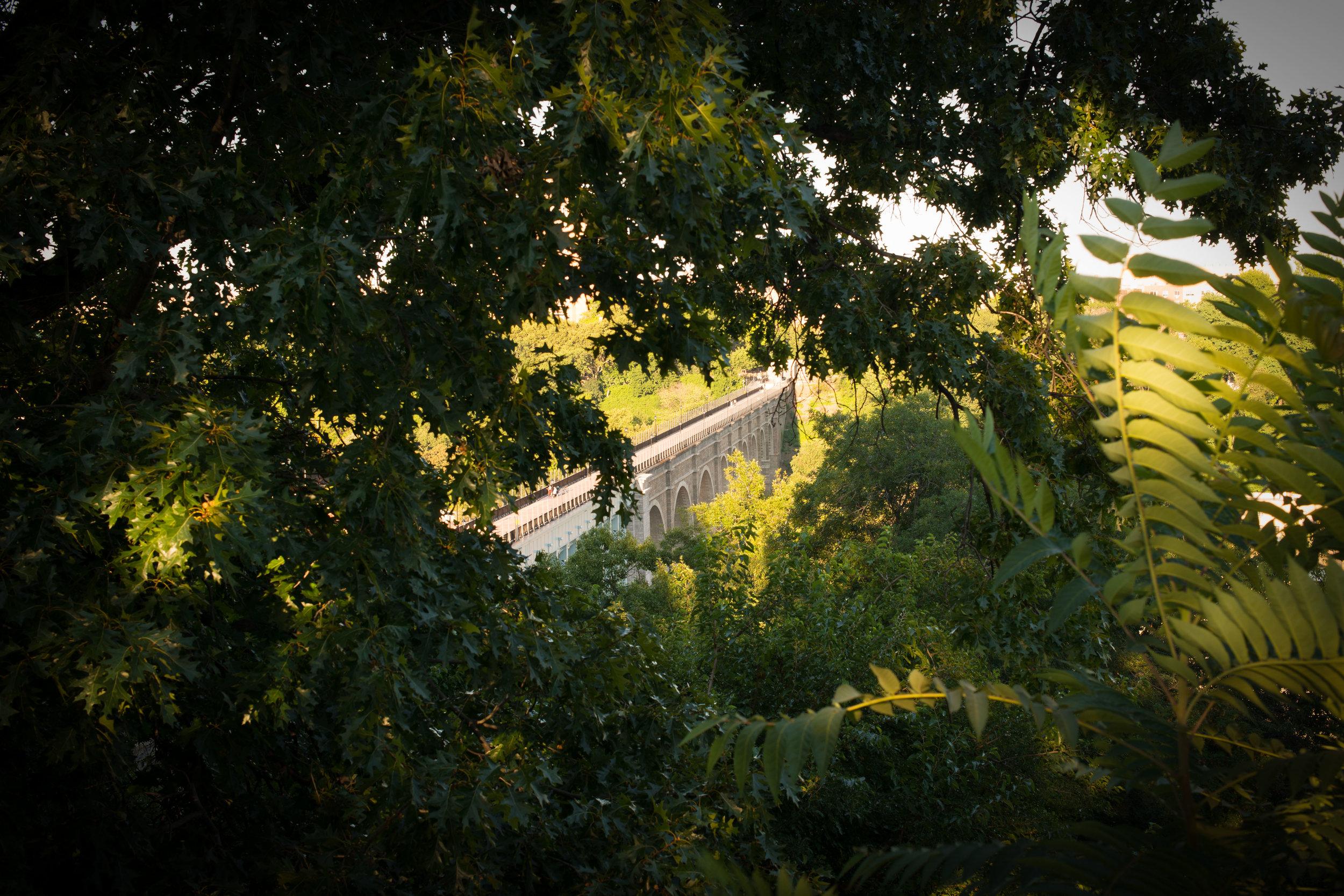 13. Highbridge Dibond 24 x 36 inches.jpg