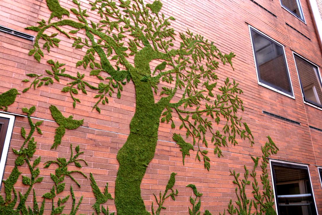 Preferred Moss Mural.jpg