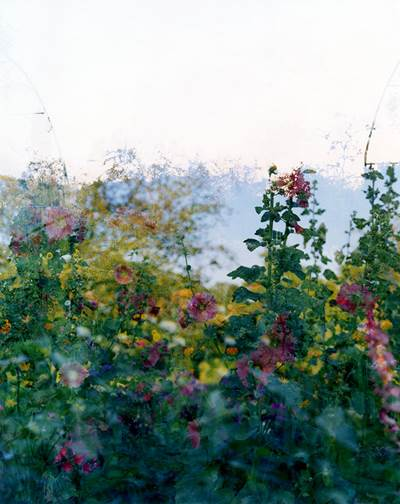 Sally Apfelbaum Giverny Series, 2012 C-Prints