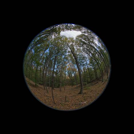 Edward Fausty Worlds #7774, 2014 Digital pigment photograph