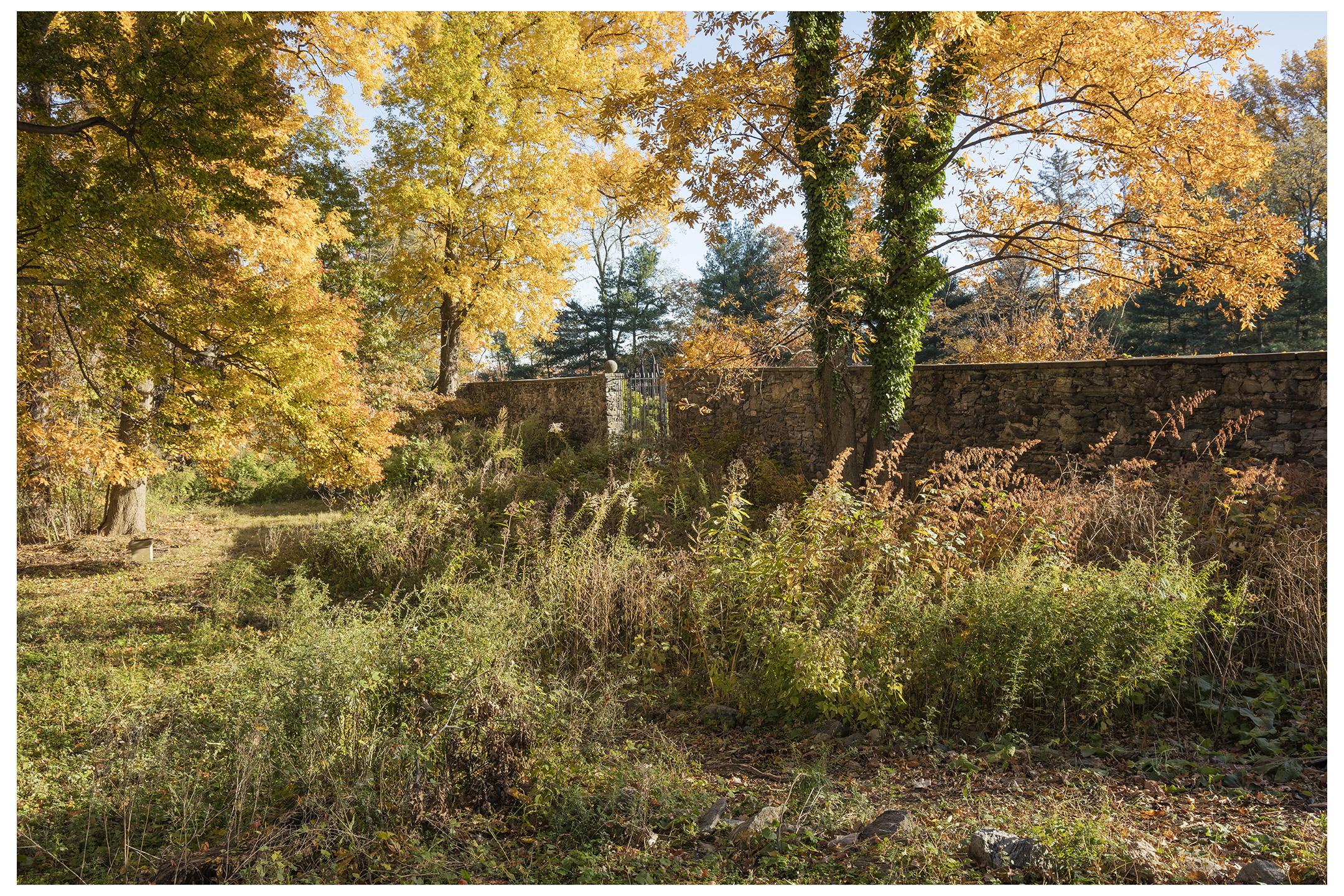 Autumn Wall, Evening Light, Pell Mansion.jpg