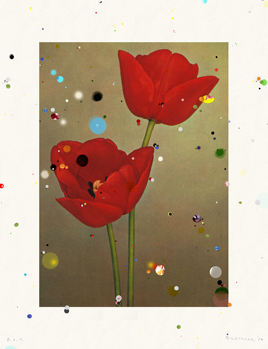 Sebaastian Bremer Bloemen: Darwin Tulip Charles Needham, 2017 Archival inkjet print, hand painting, mirror mylar and mylar confetti collage