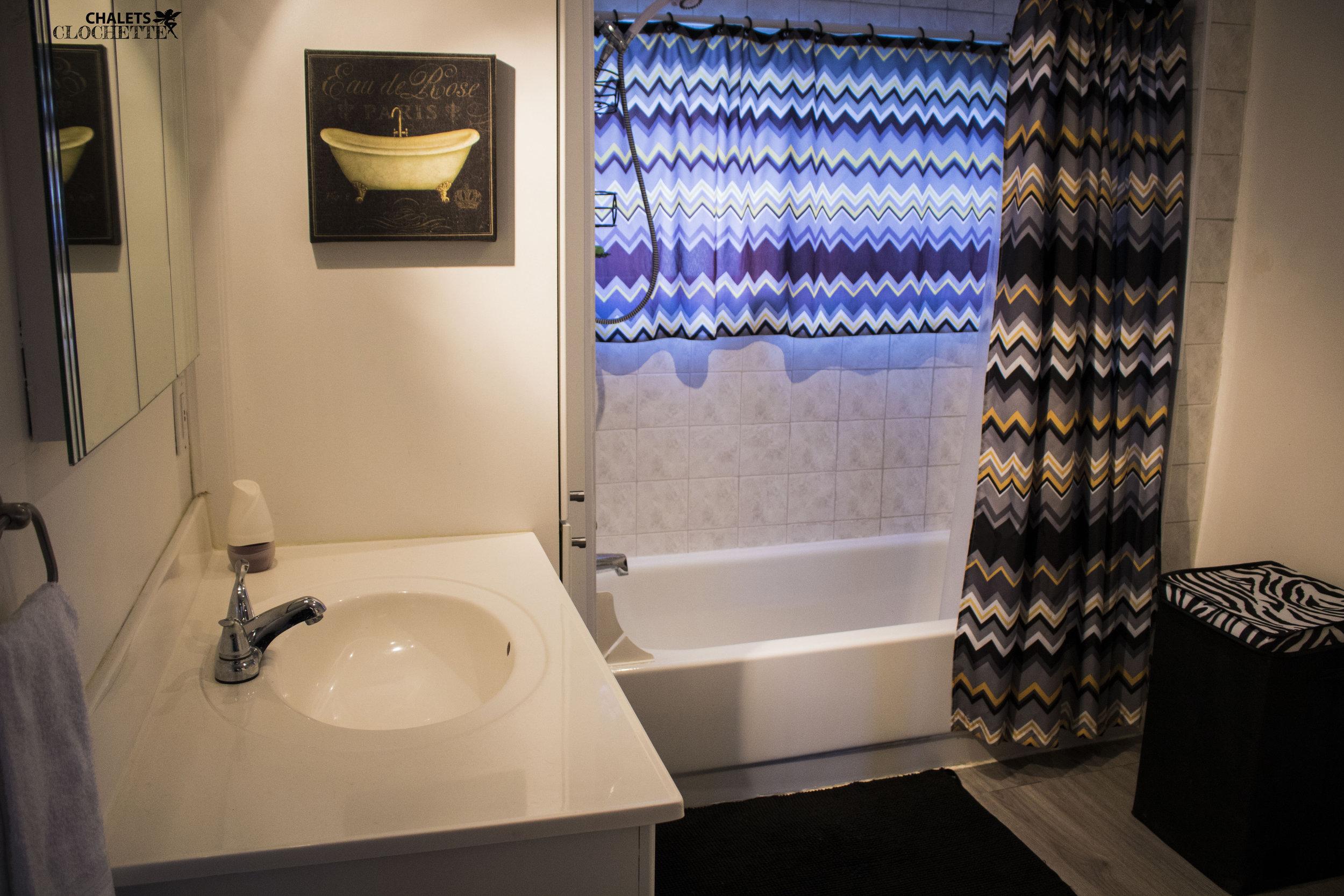 Salle de bain 1 WM.jpg