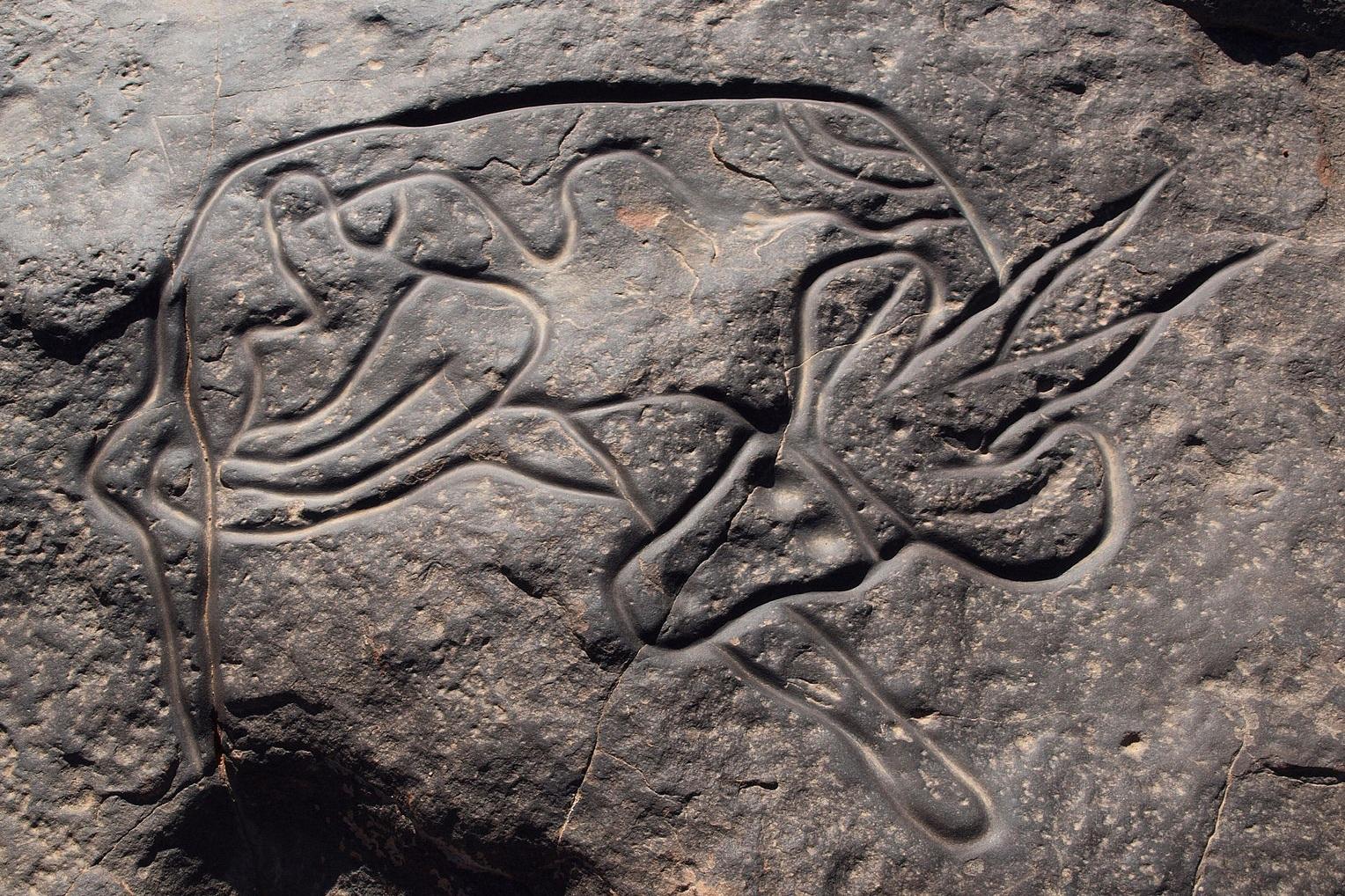 Rock art in Tassili n'Ajjer