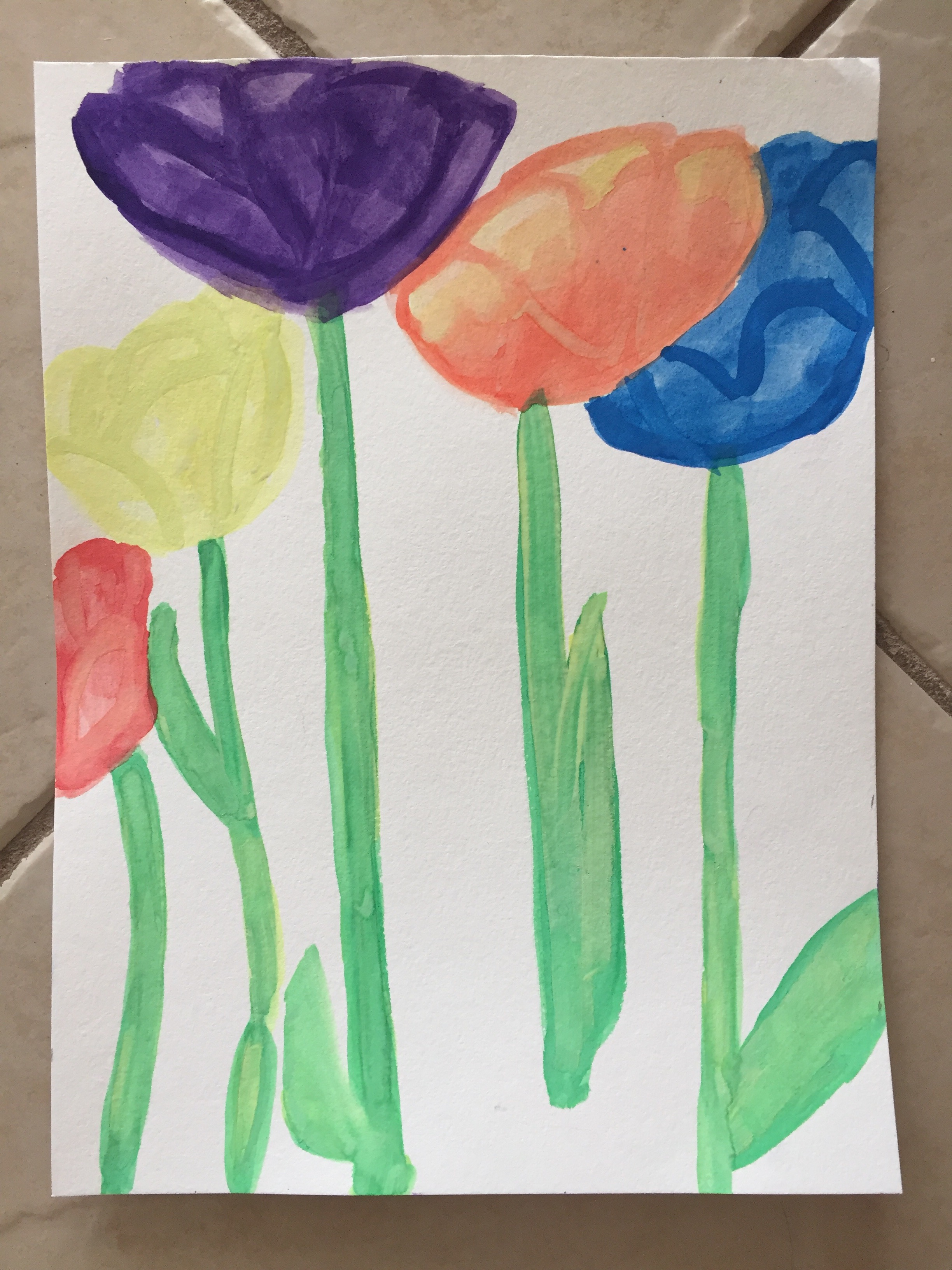 My attempt at a tulip garden! Don't laugh too hard.