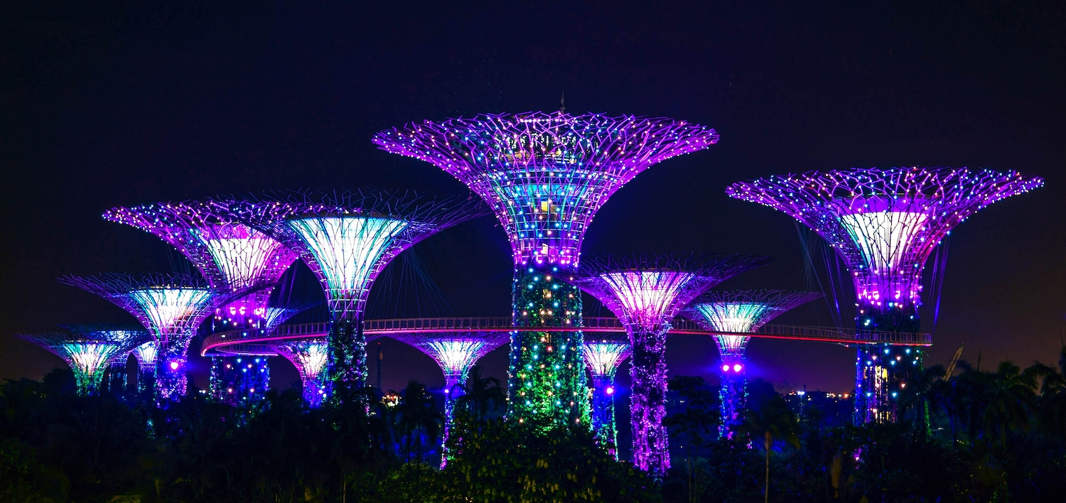 The Gardens by the Bay, one of the many awesome night sights seen during the Singapore Grand Prix.
