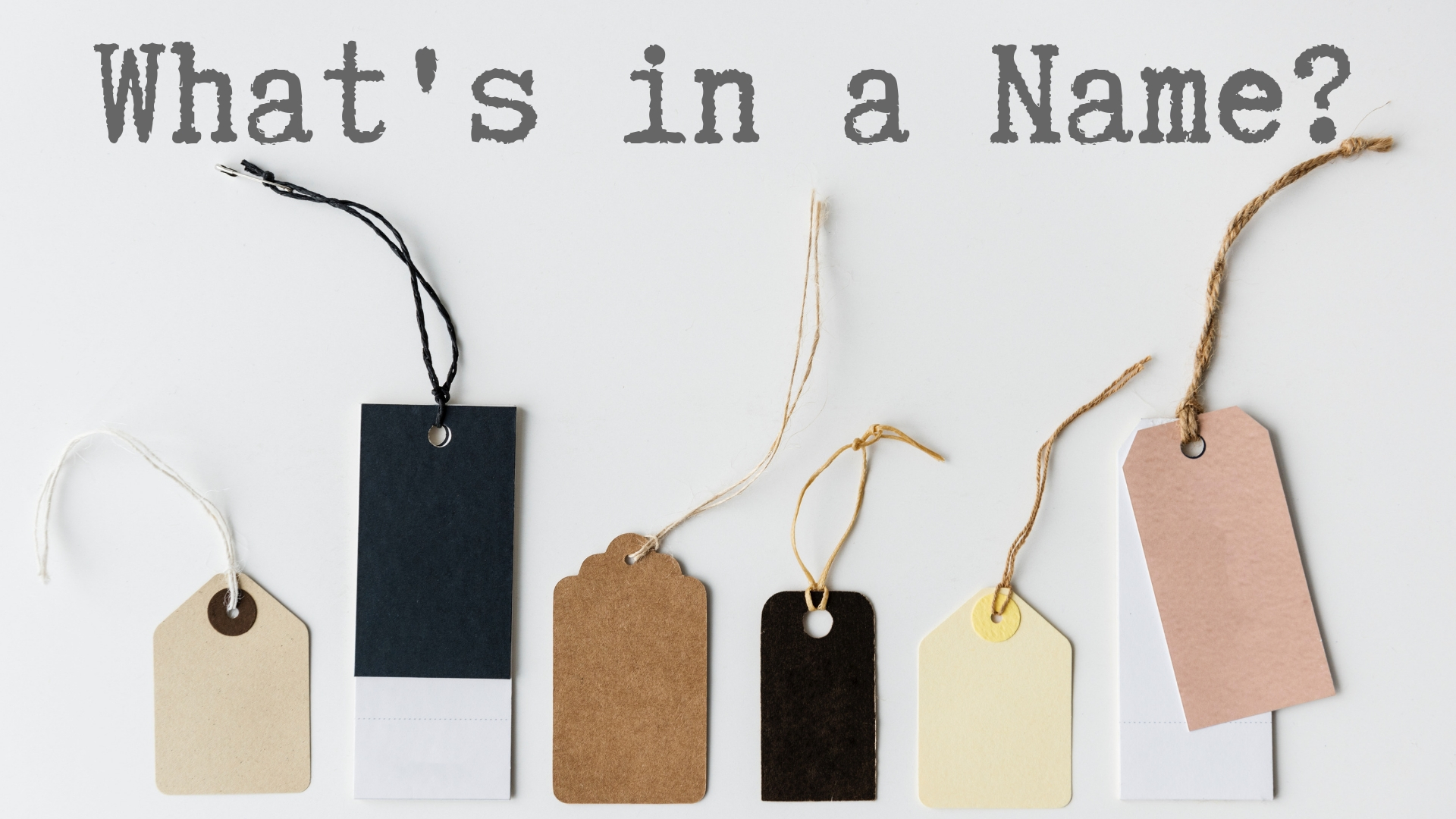 banner-whats-in-a-name-02.jpg