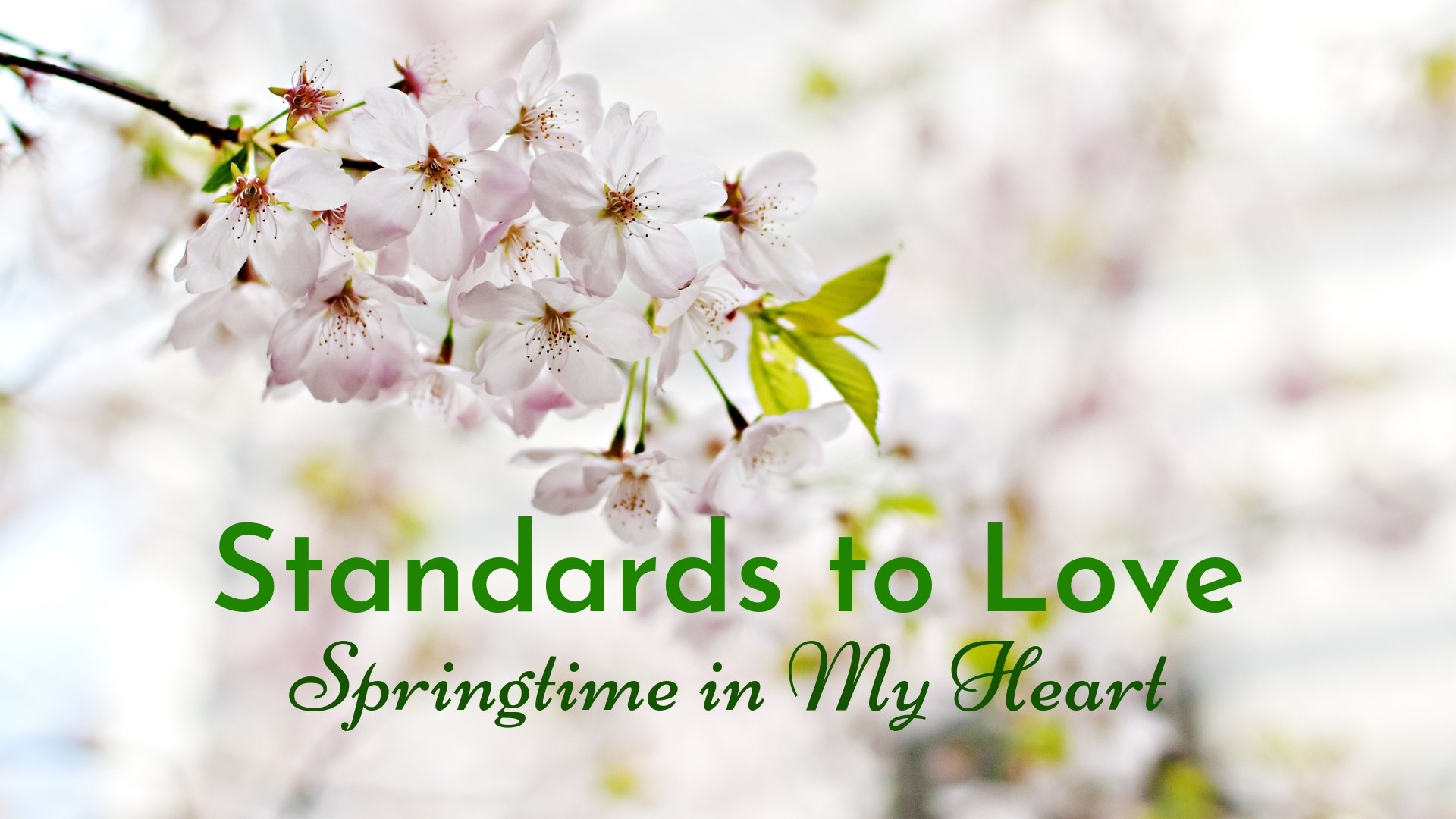 banner-standards-to-love-springtime-in-my-heart-01 (2).jpg