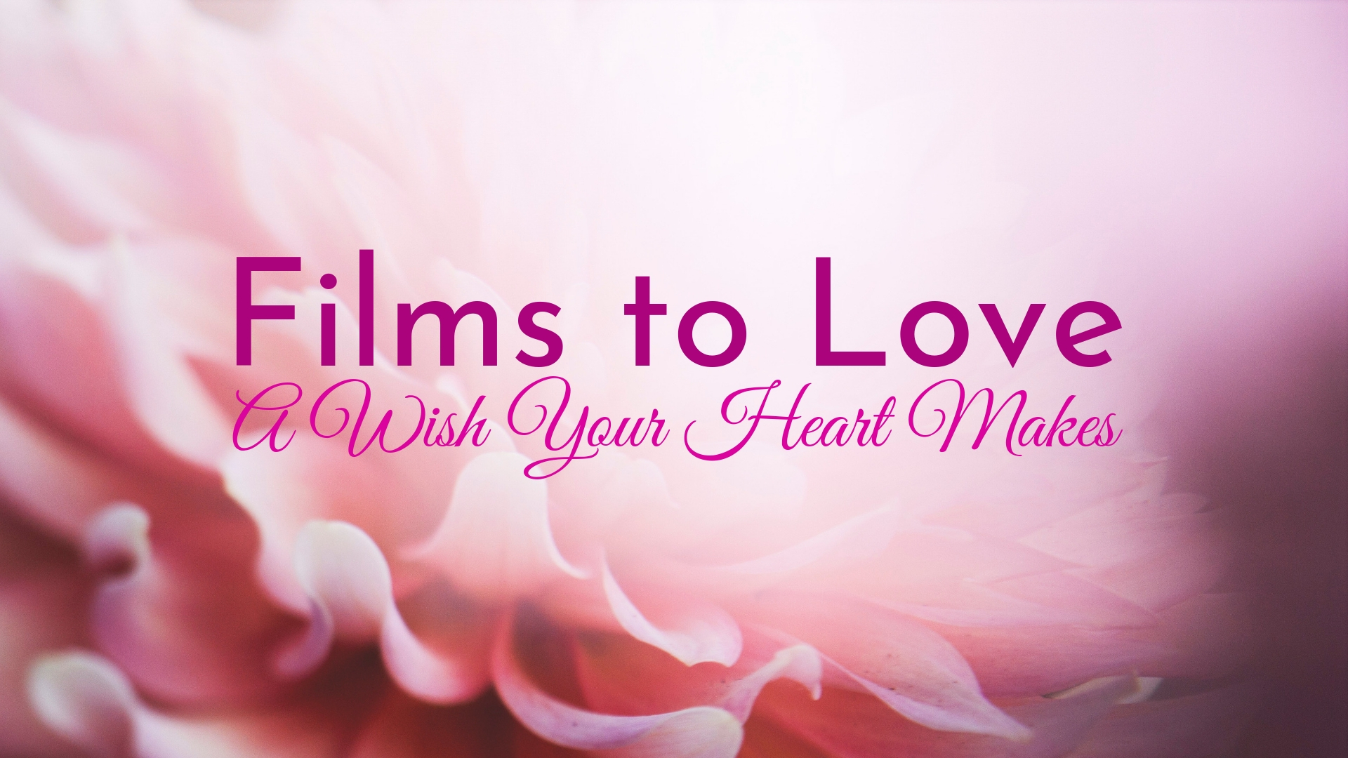 banner-films-to-love-a-wish-your-heart-makes-01.jpg