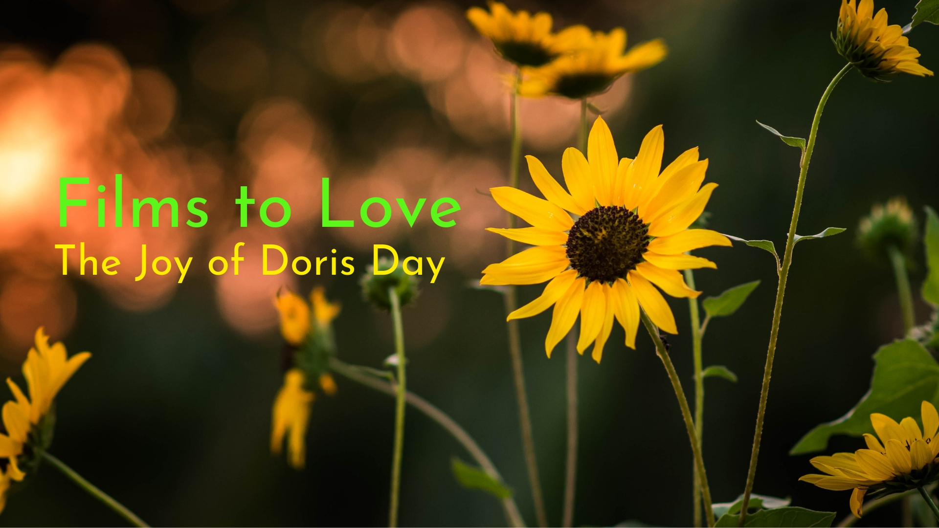 banner-films-to-love-the-joy-of-doris-day-01.jpg