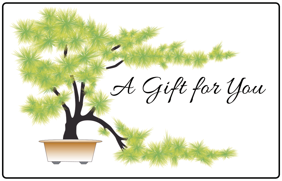 Acupuncture reiki hypnosis gift card