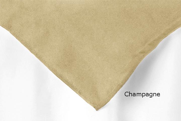 Overlay Polyester Champagne.jpg