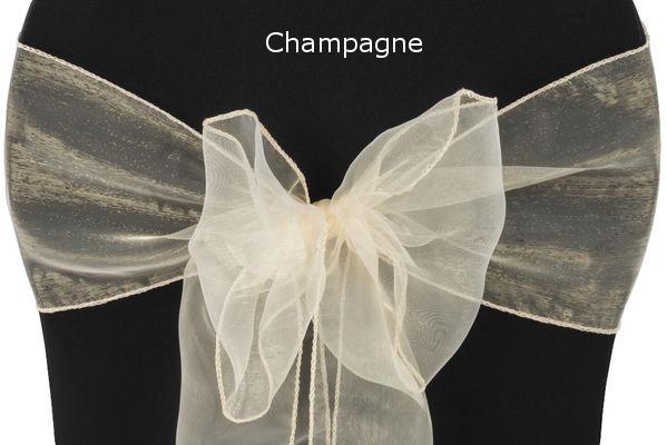 Sash Organza Champagne.jpg
