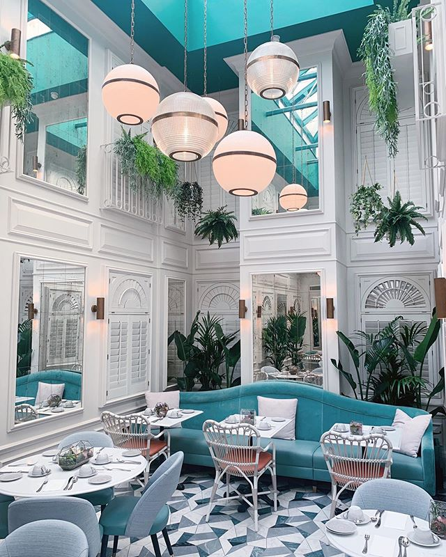 Housed in a beautiful botanical glasshouse with abundant arrays of luxurious greenery and planting, The elegant Botanica of @100queensgate is flooded with natural light and curated by Whittard Teas of Chelsea. The ideal place for indulgent Afternoon Teas and cocktails. 📸 @tripserto