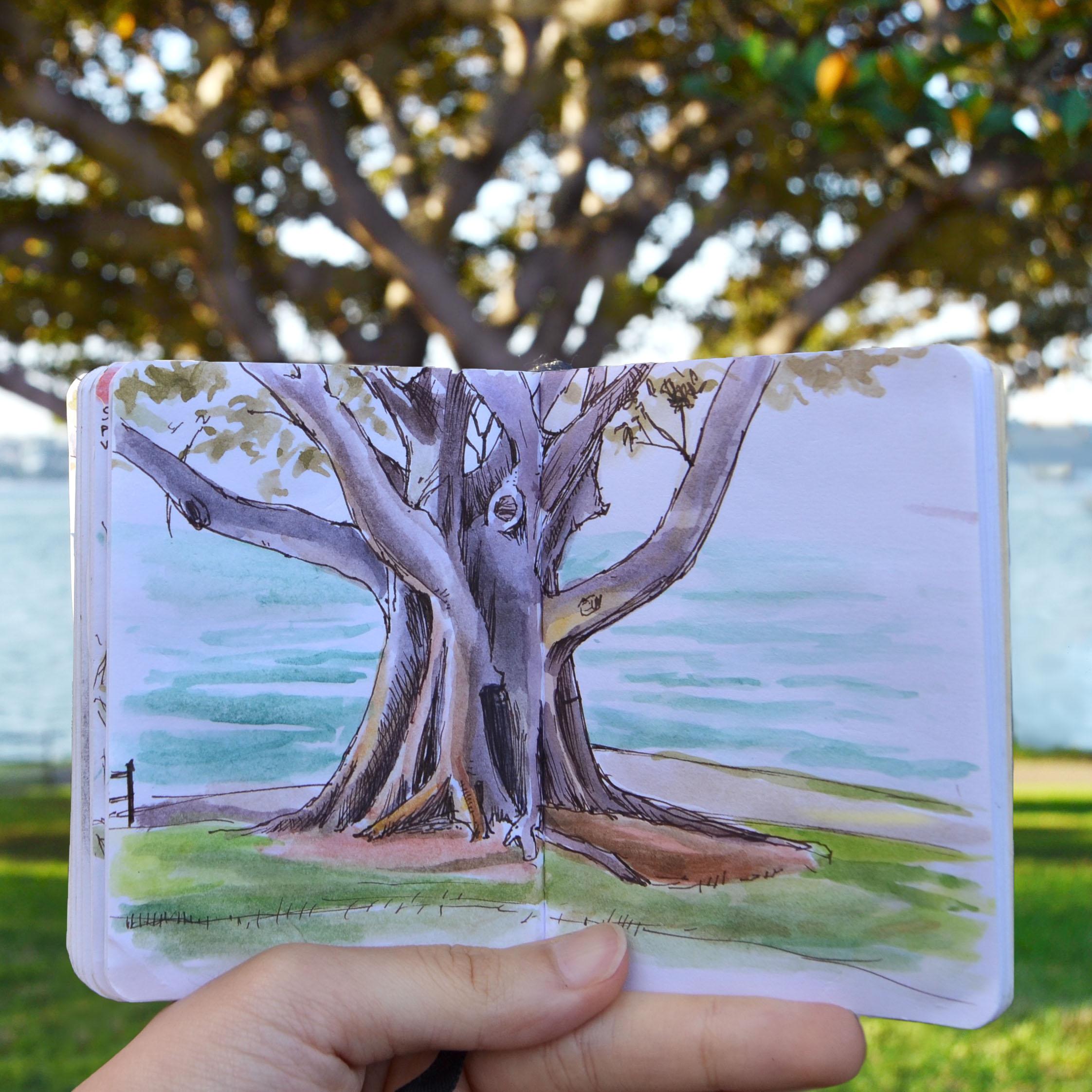 treeByTheSea.jpg