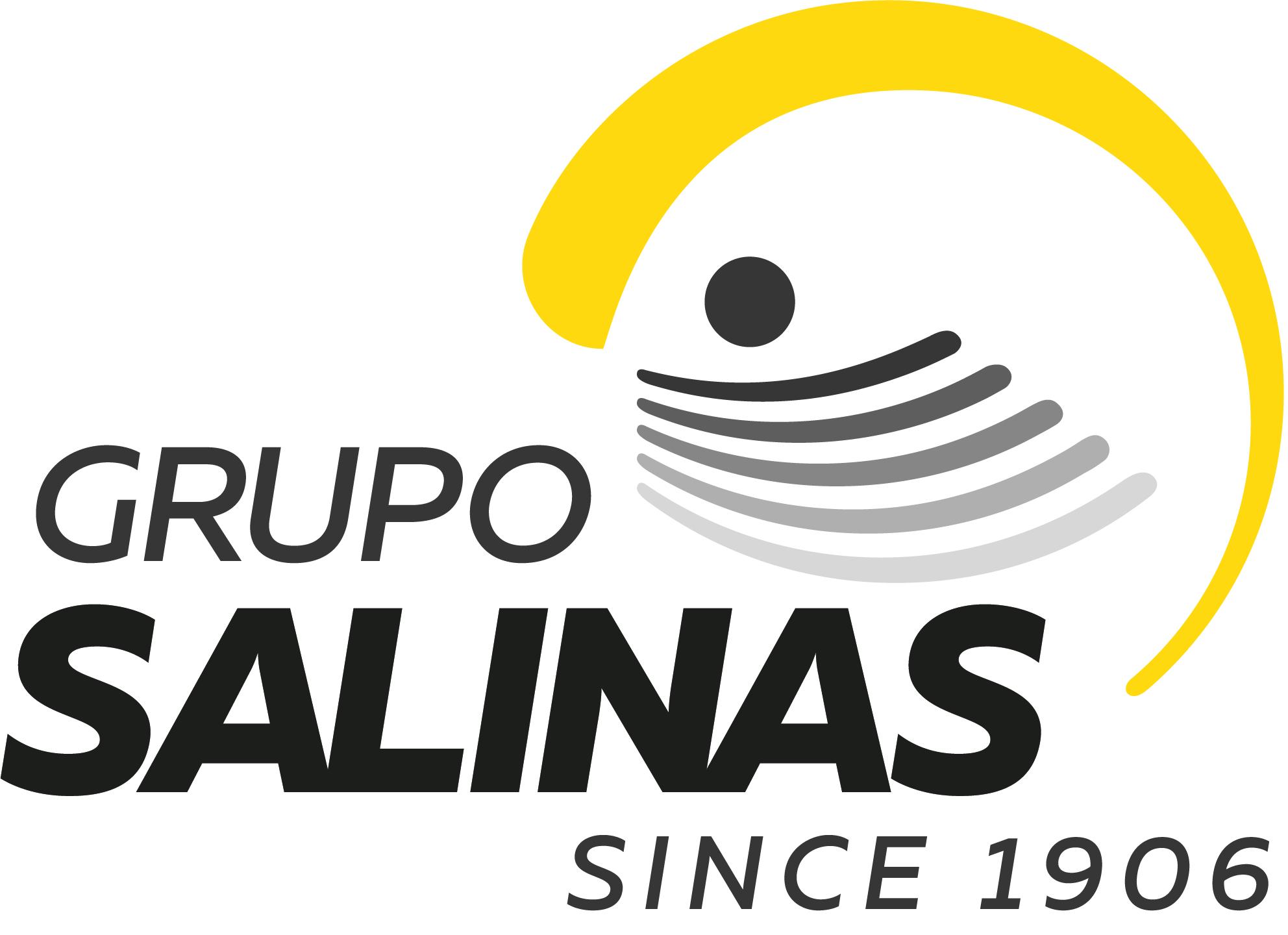 Grupo Salinas.jpg