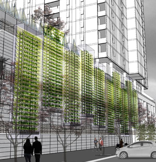 Hydroponic-Greenhouses_Thumb_600.jpg