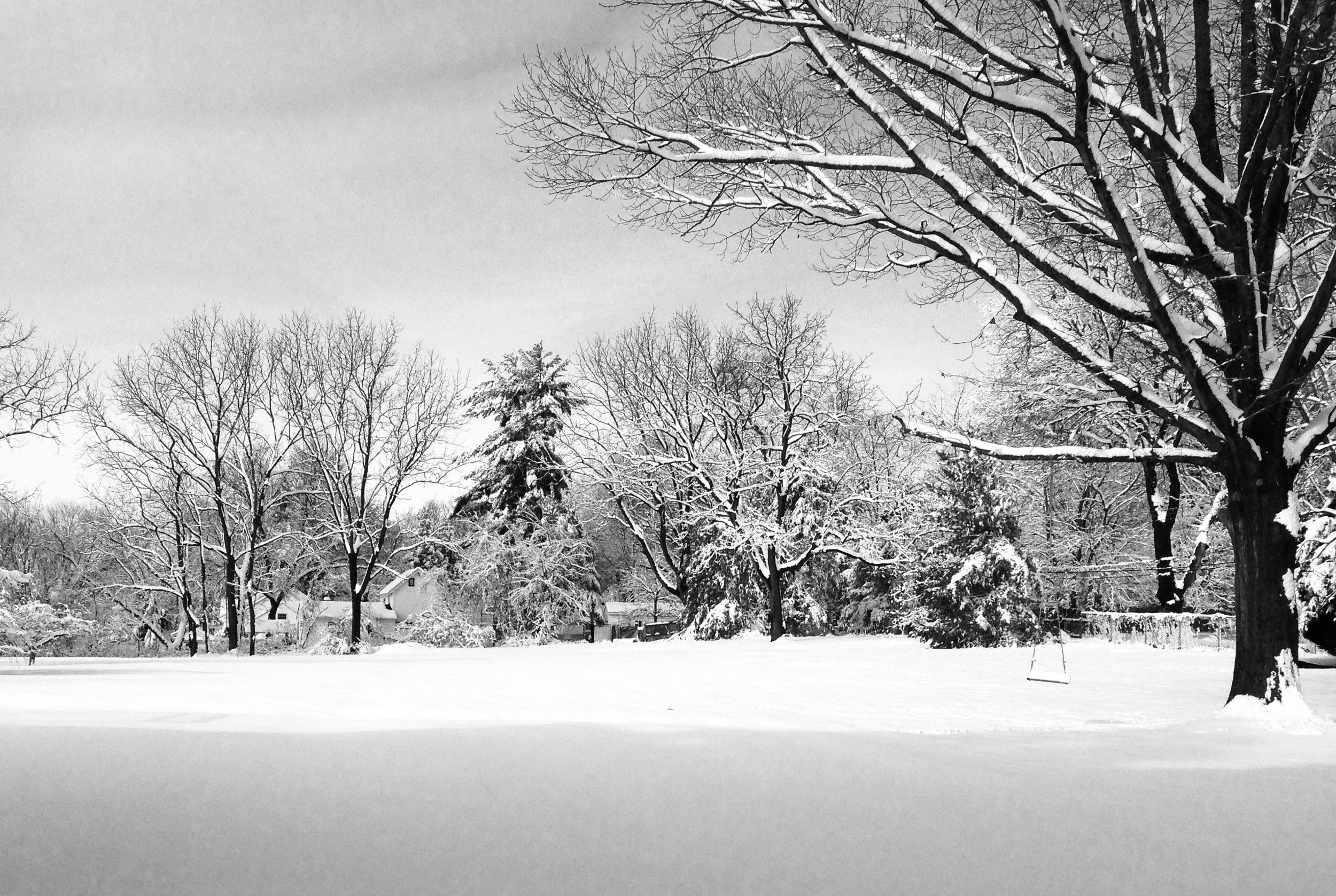 Winter #3