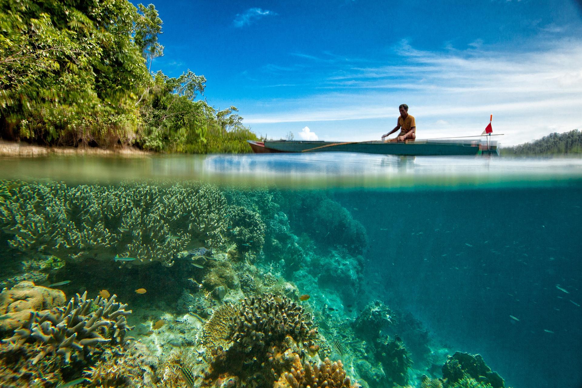 landscape-underwater-coral-reef-pixabay-kanenori.jpg