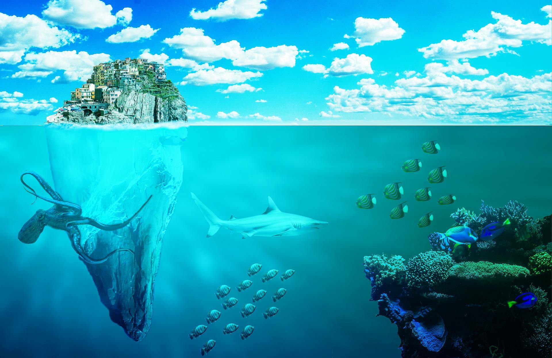 sea-ecosystem-small.jpg