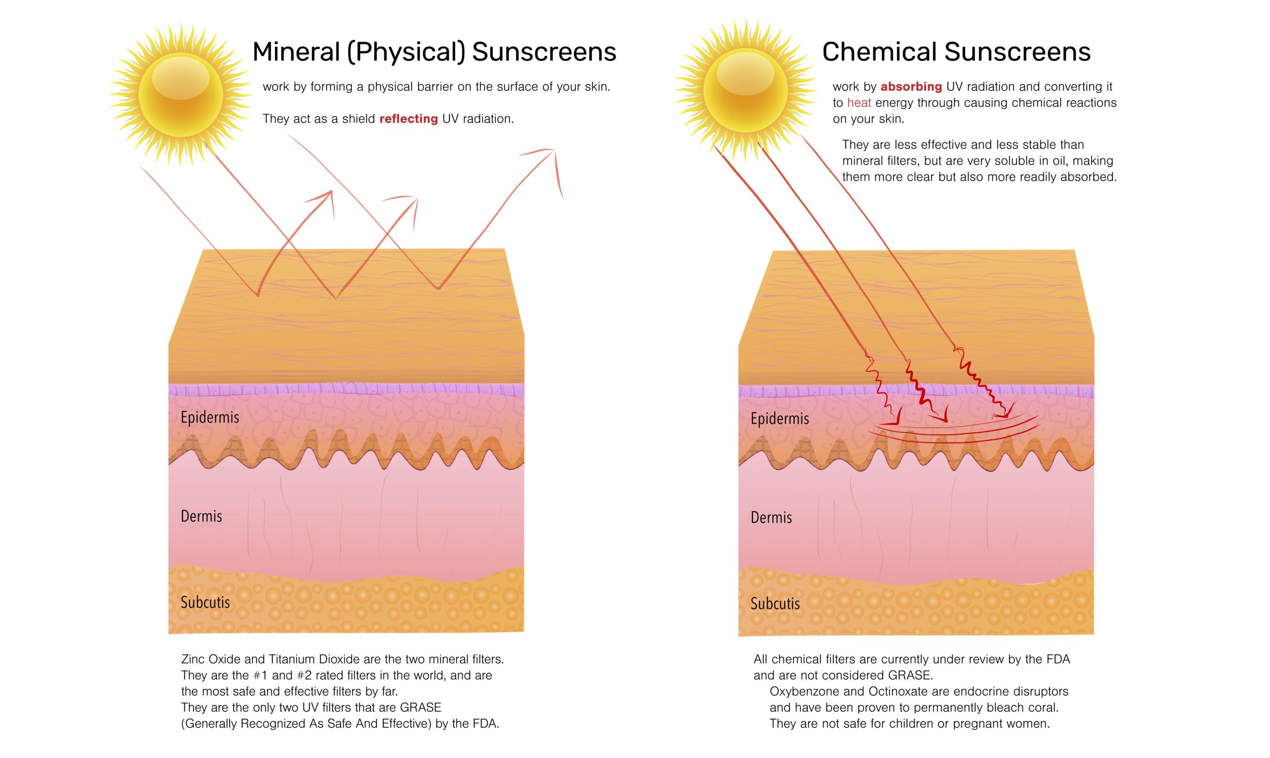harken-derm-mineral-vs-chemical-sunscreens-diagram-explanation.png