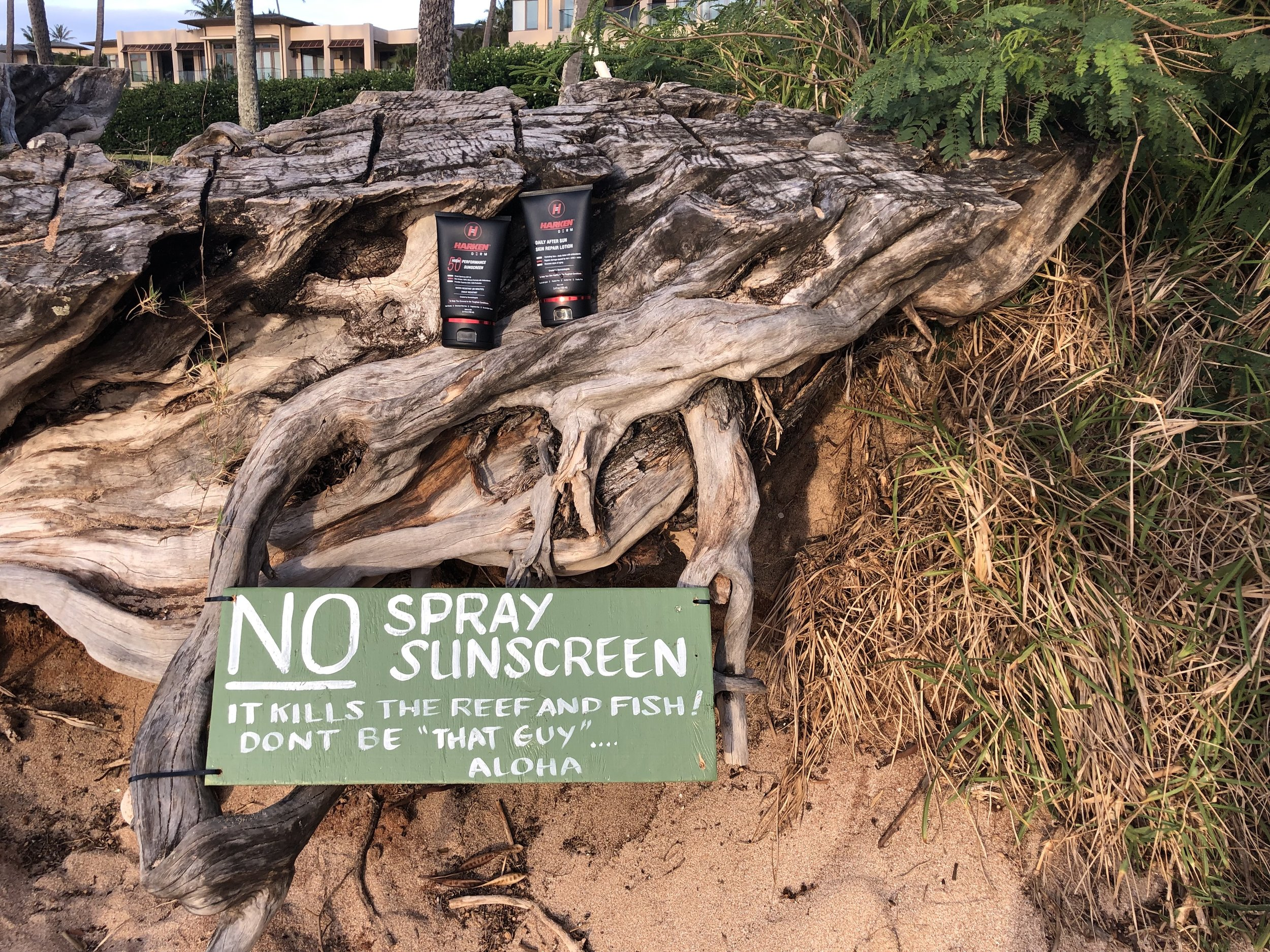 harken-derm-photo-maui-sunscreen-ban-oxybenzone-spray-safe-sunscreen-kapalua-bay-maui-04-26-2019.jpg