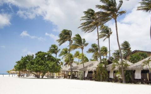 Romantic Caribbean Vacation Aruba Bucuti & Tara Resort