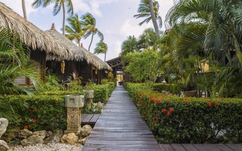 Romantic Caribbean Vacation Aruba Bucuti & Tara