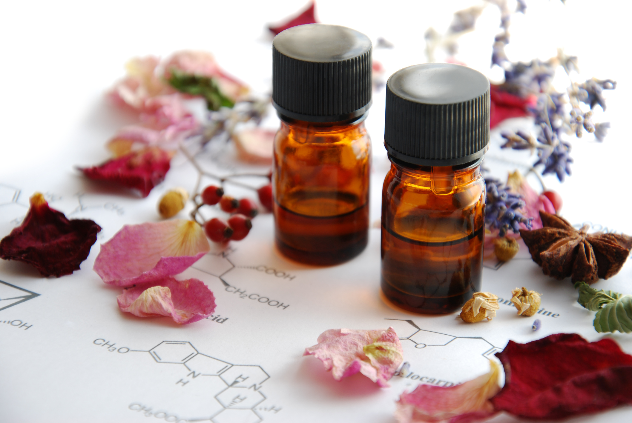 All natural skin moisturizers & skin oils.