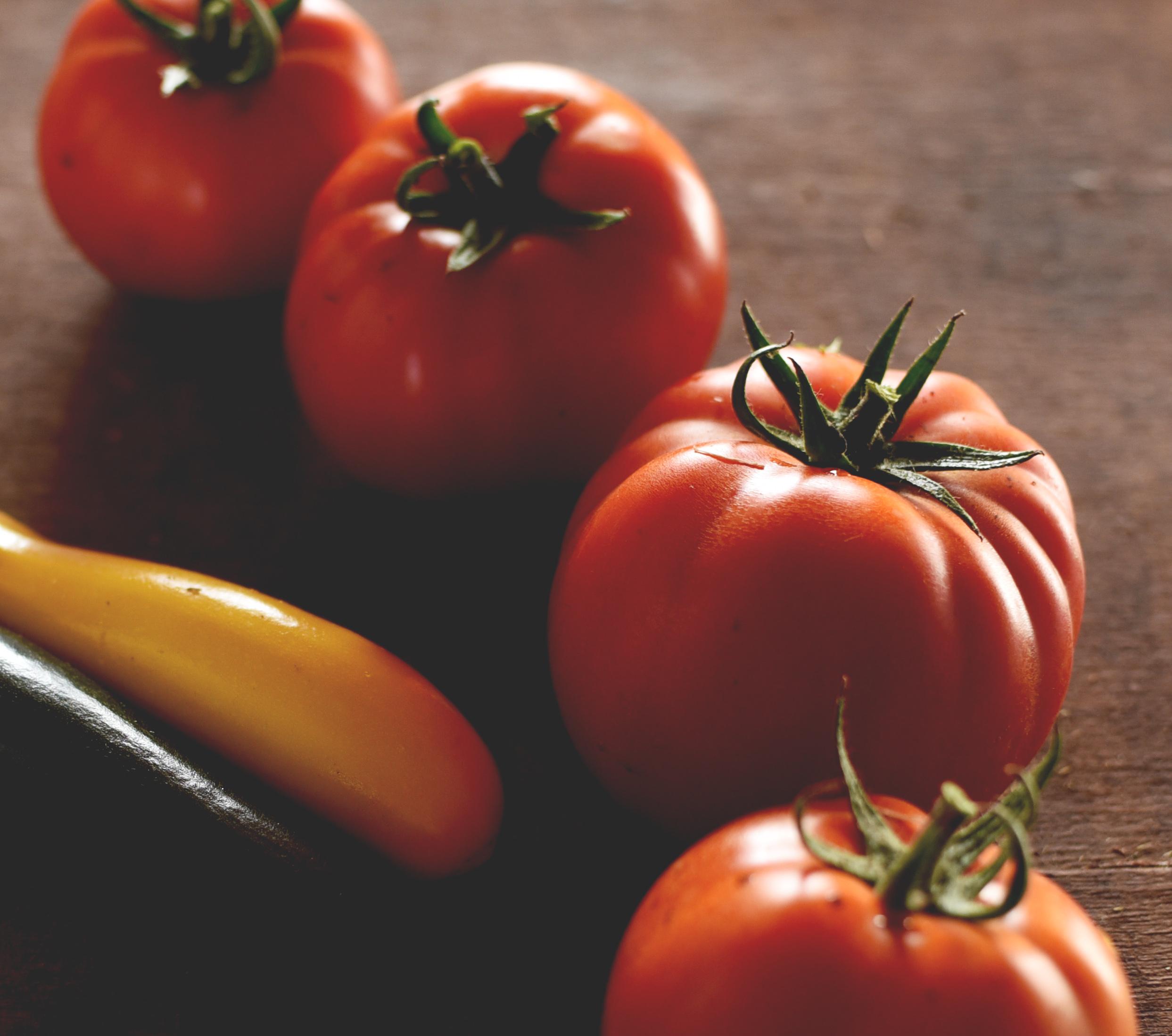 tomates bio.jpg