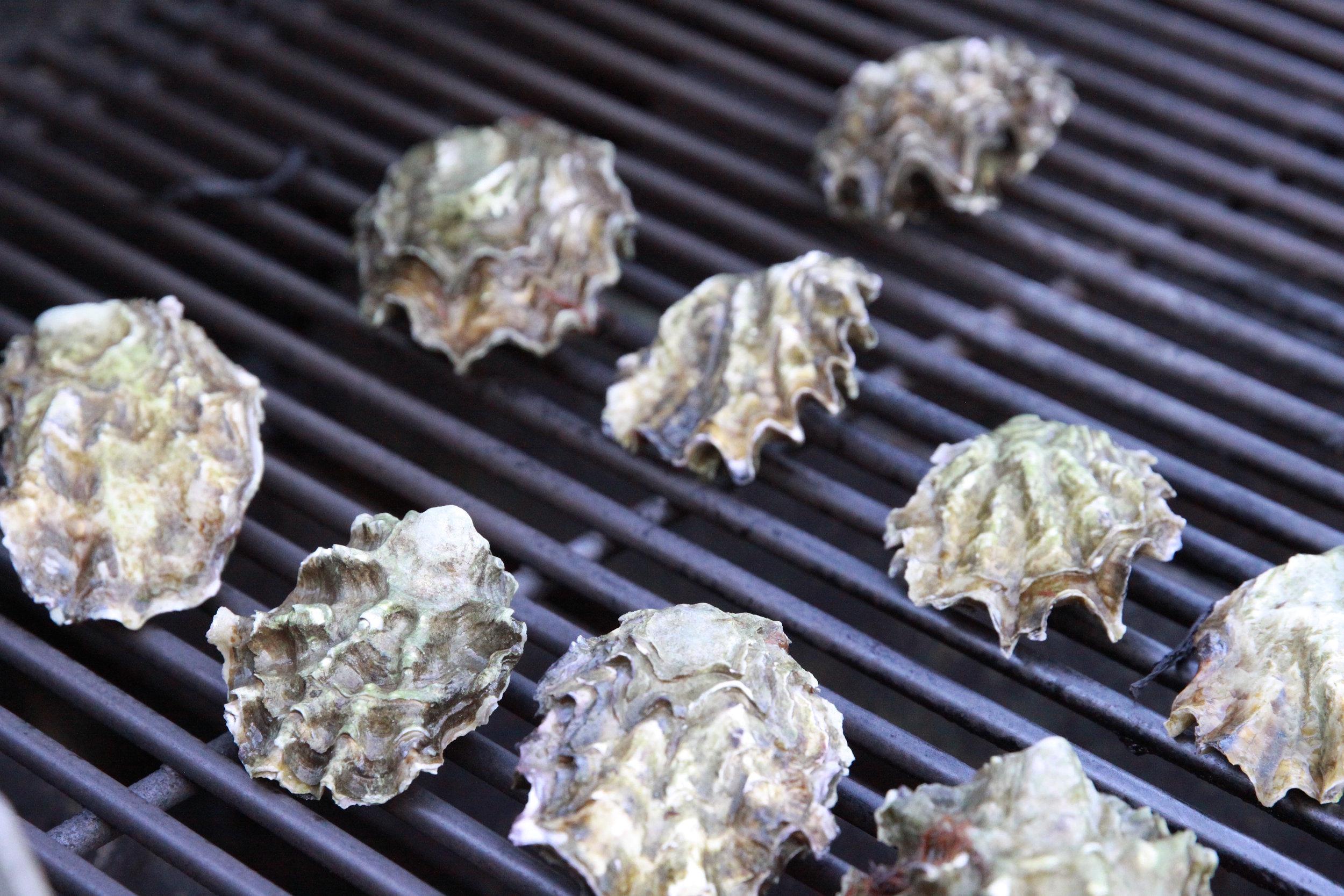 Grilled Oysters; Photo by: Lynn Mc Shane - Anam Cara