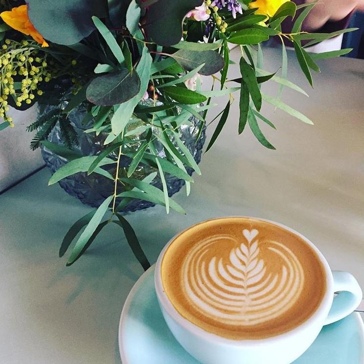 DavisD4 | Coffee