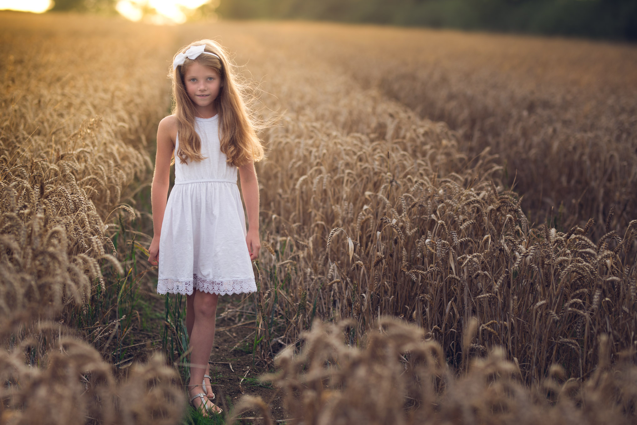 Girl in wheat field at sunset | Children's Photography