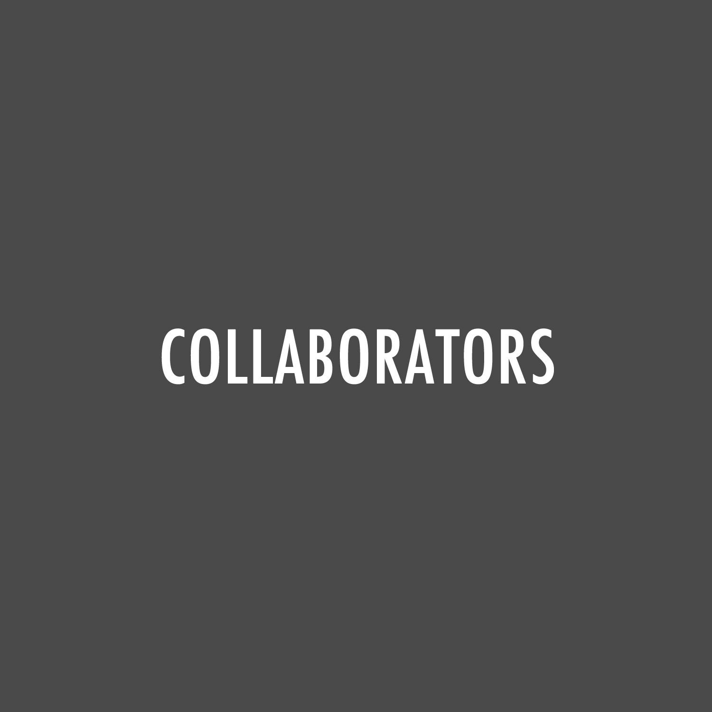 COLLABORATORS ICON FOR WEB.jpg
