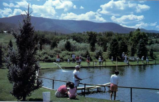 PHOTO: Seeping Springs Trout Lake & RV