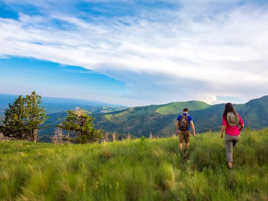 Hike up and ride down free of charge on the Ski Apache gondola.