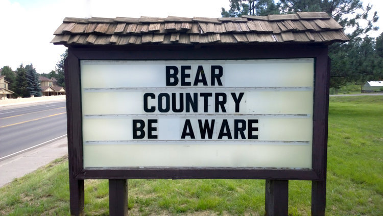 PHOTO: Ruidoso is Bear Country