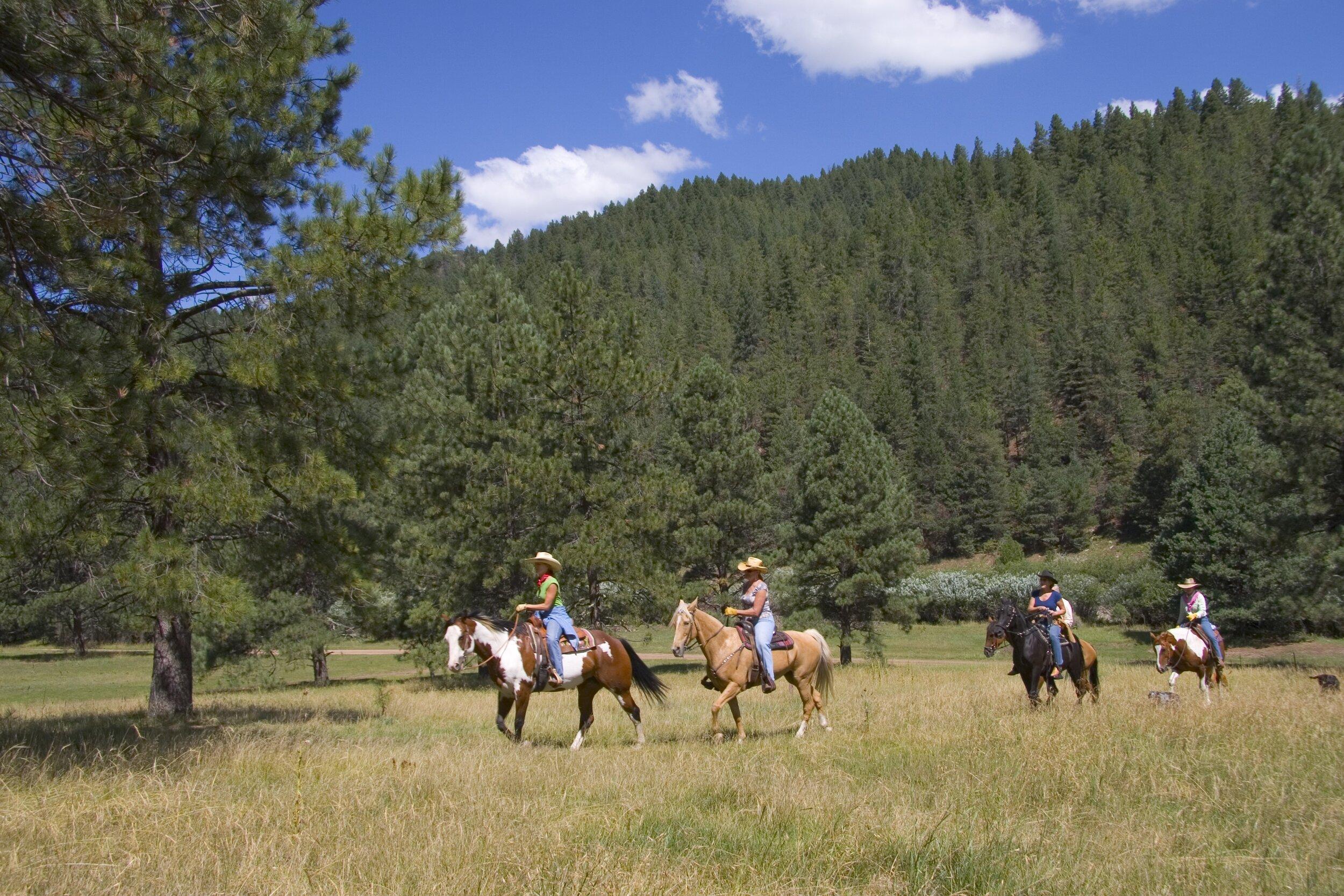 Horseback Riding Ruidoso National Forest.jpg