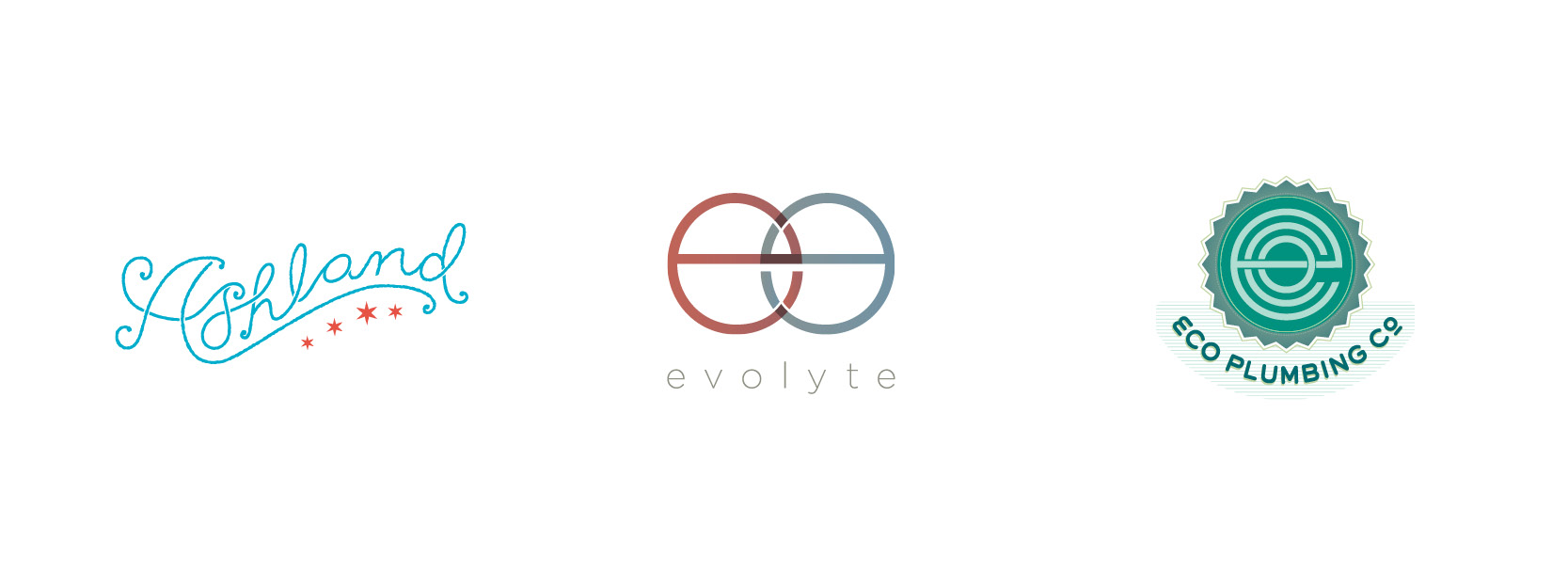 Ashland Leather concept, evolyte marketing,  Eco Plumbing Company