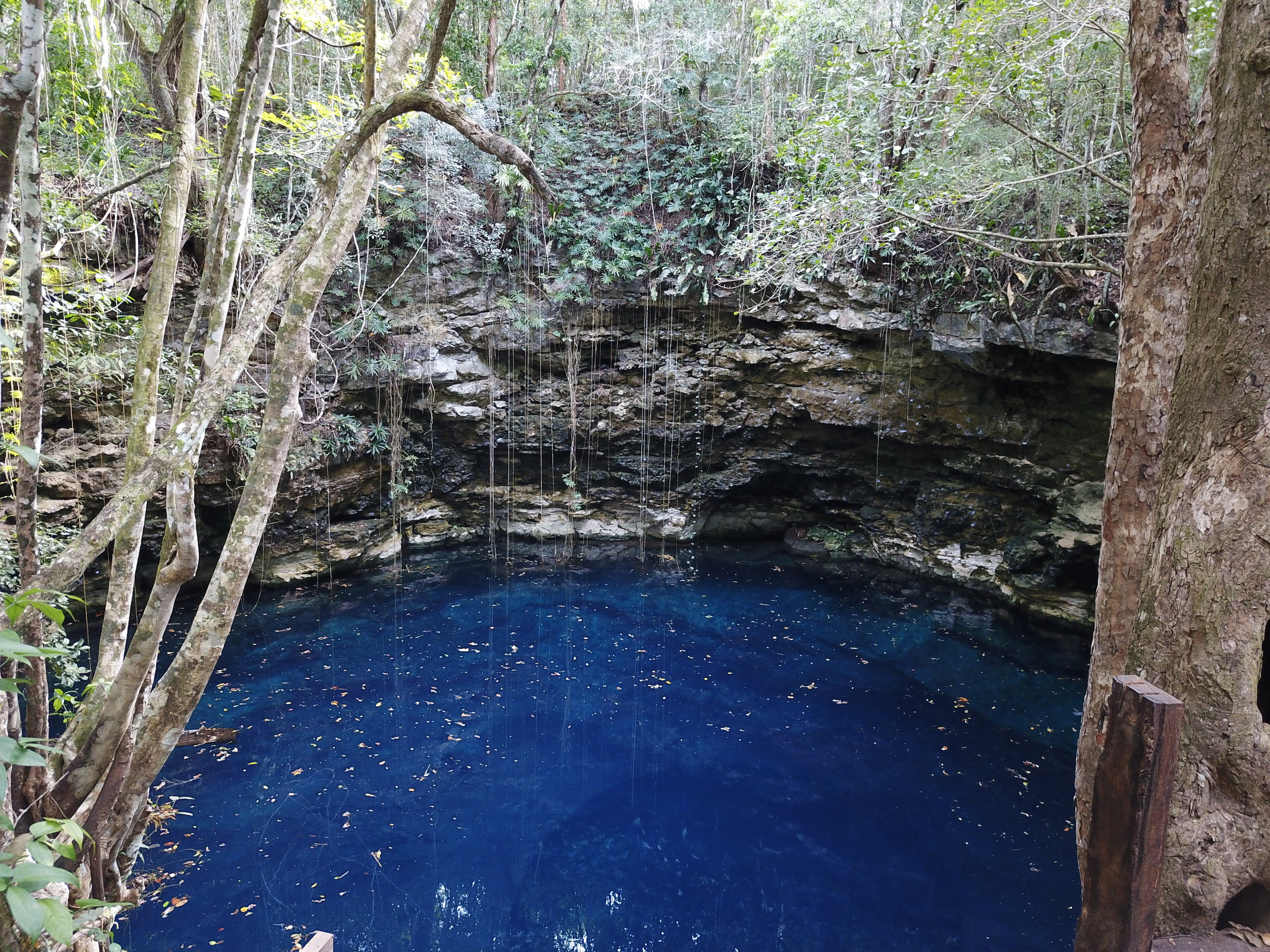 Cenote El Matt.JPG