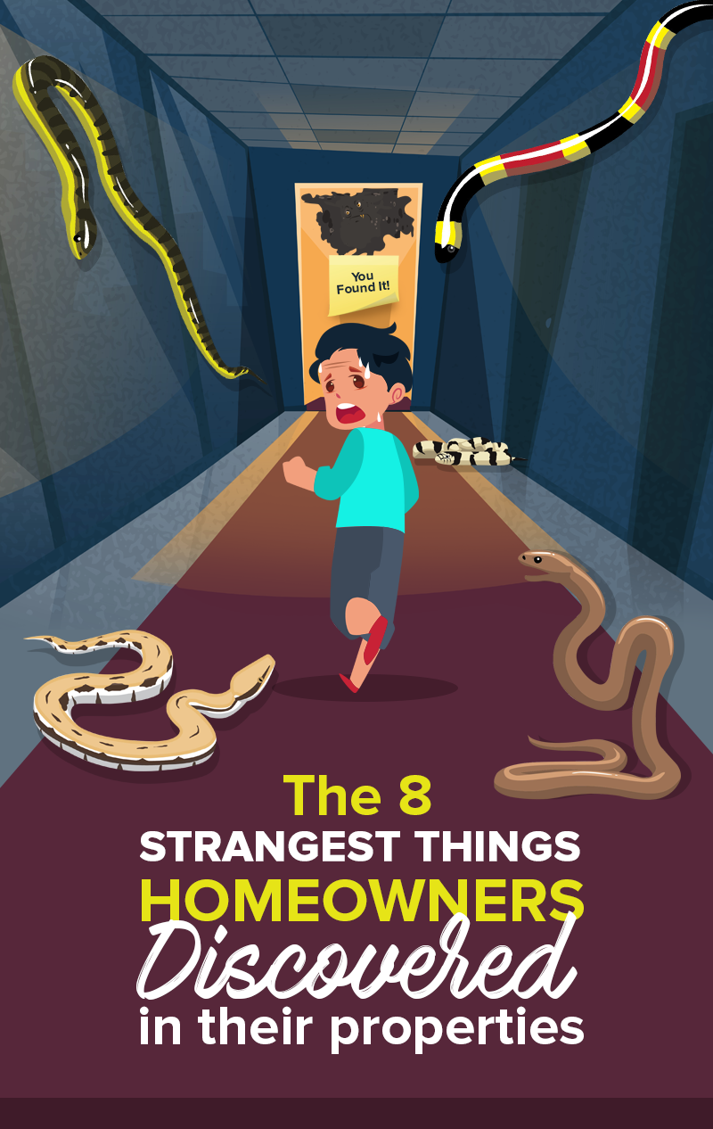 The 8 Strangest Things Homeowners Discovered In Their Properties.png