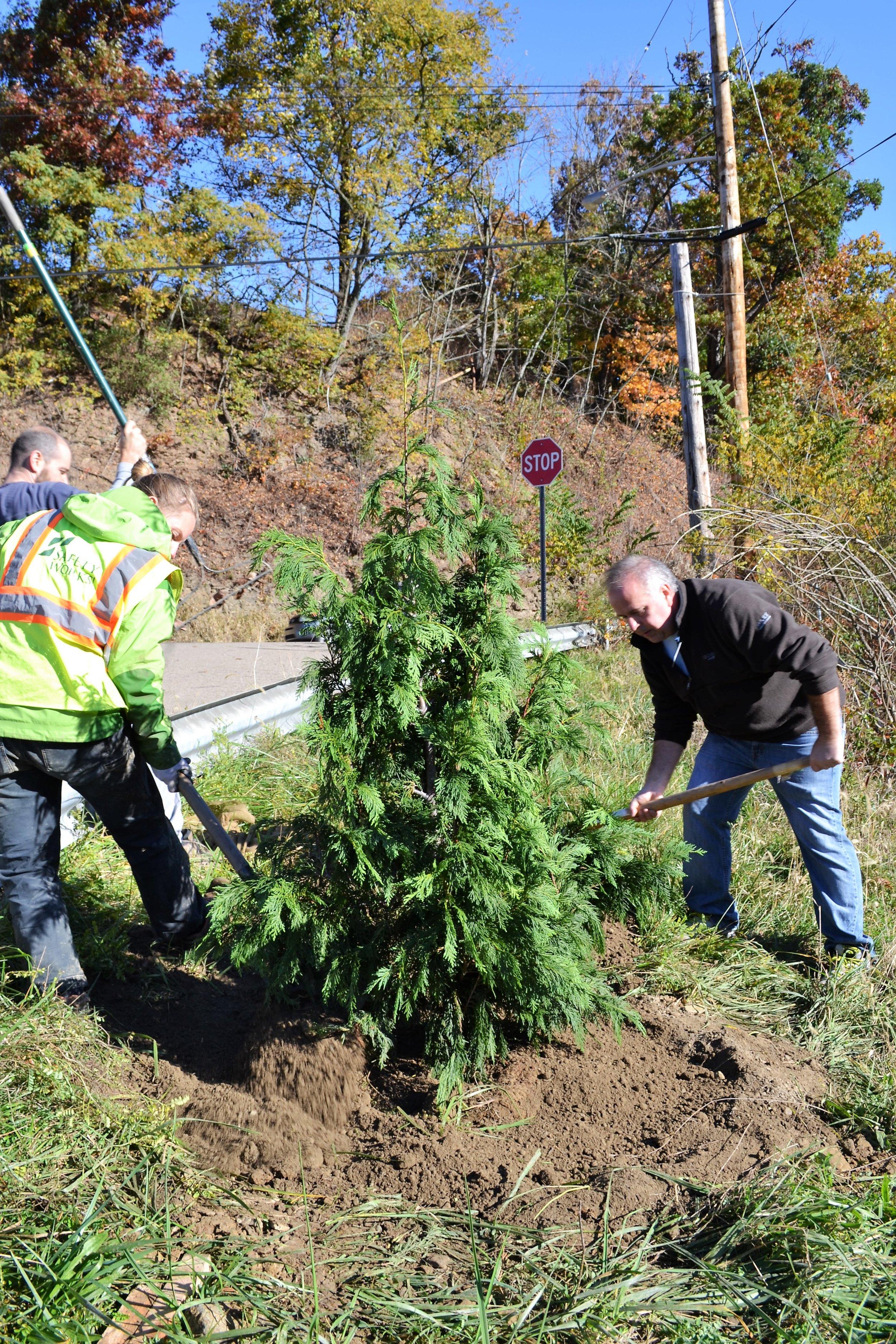 2016-11-05 Tree Planting Day (19).JPG