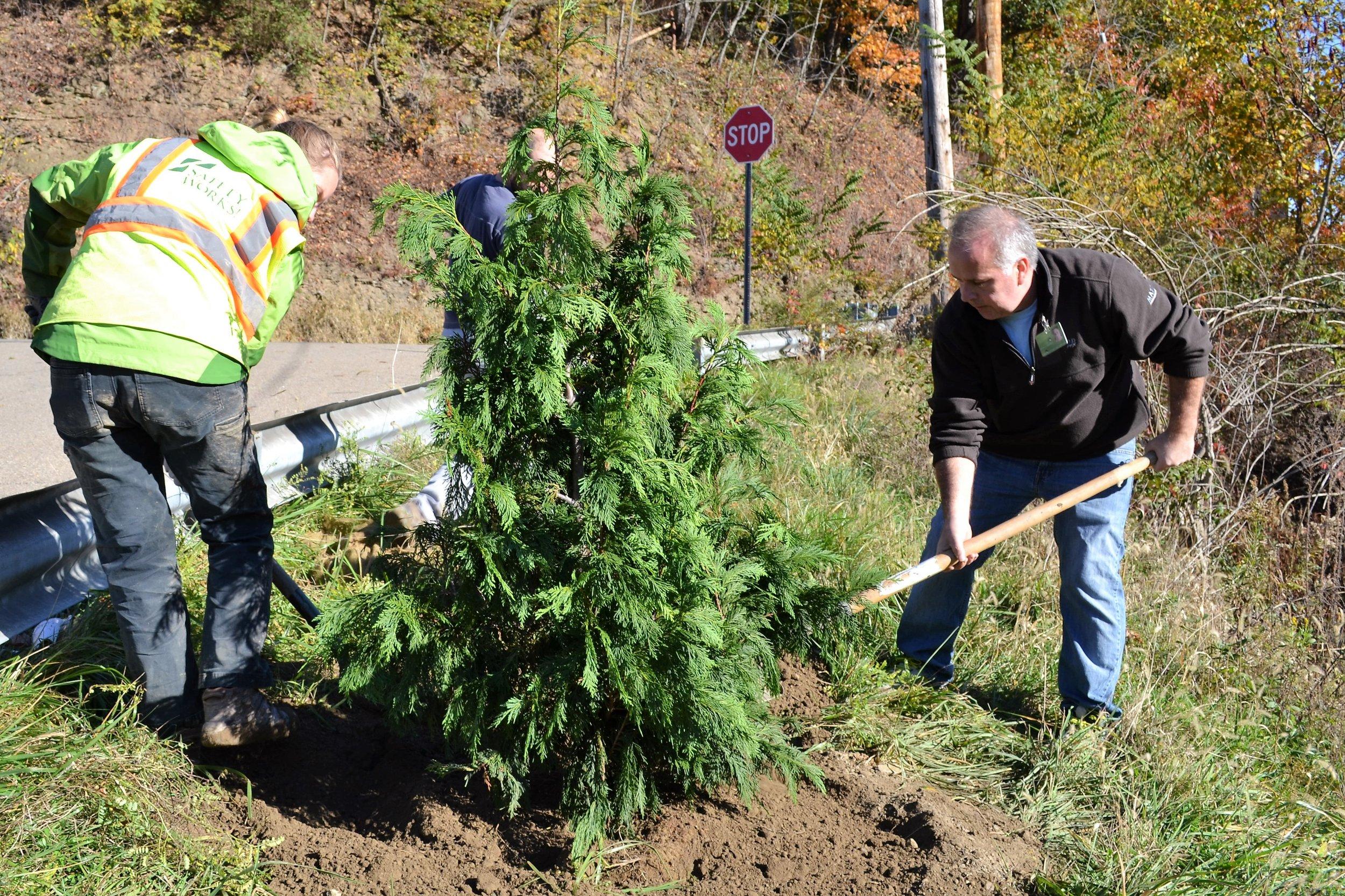 2016-11-05 Tree Planting Day (20).JPG