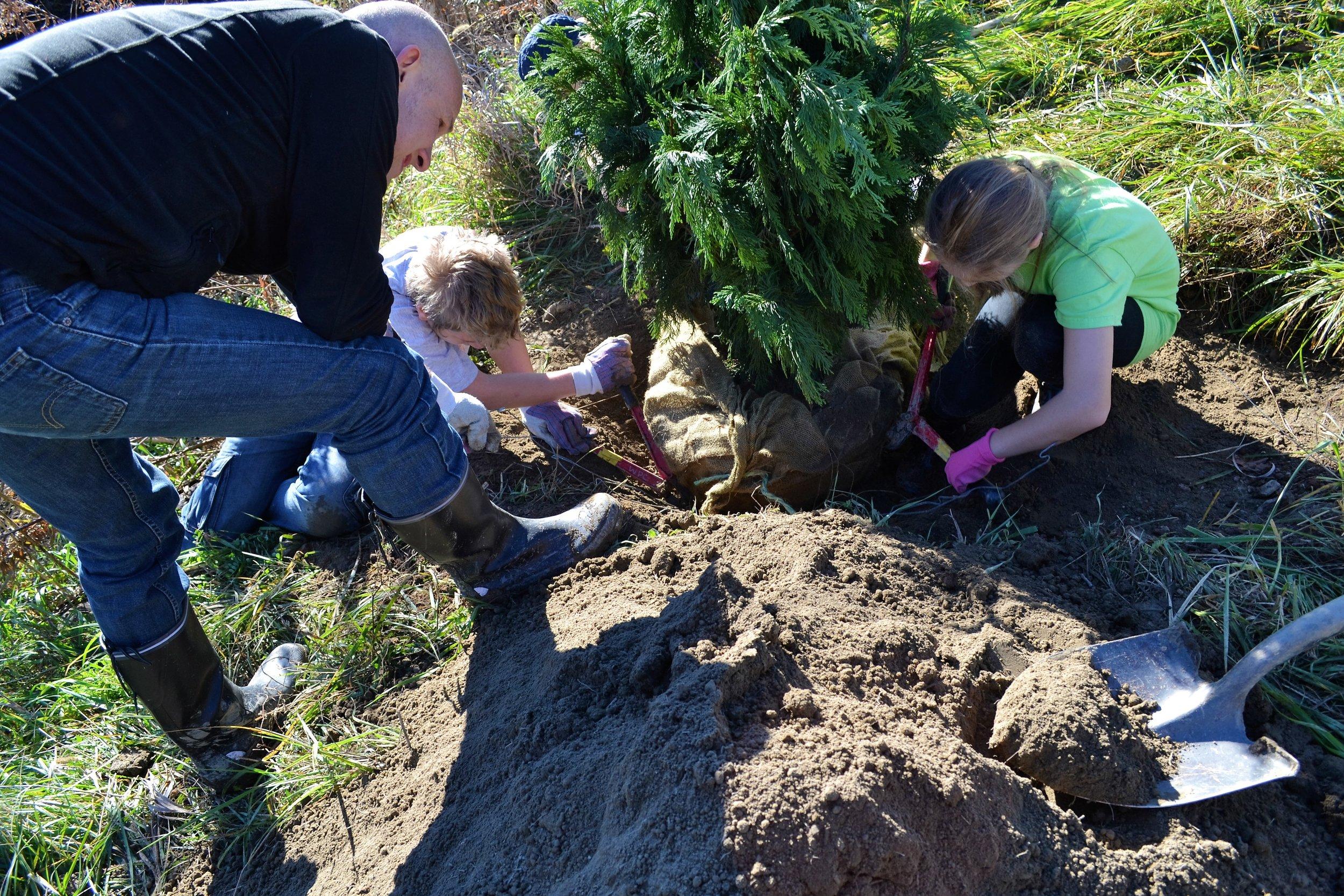 2016-11-05 Tree Planting Day (44).JPG